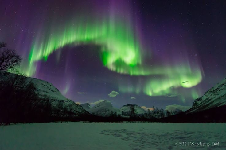 Northern lights tour in Tromso Norway