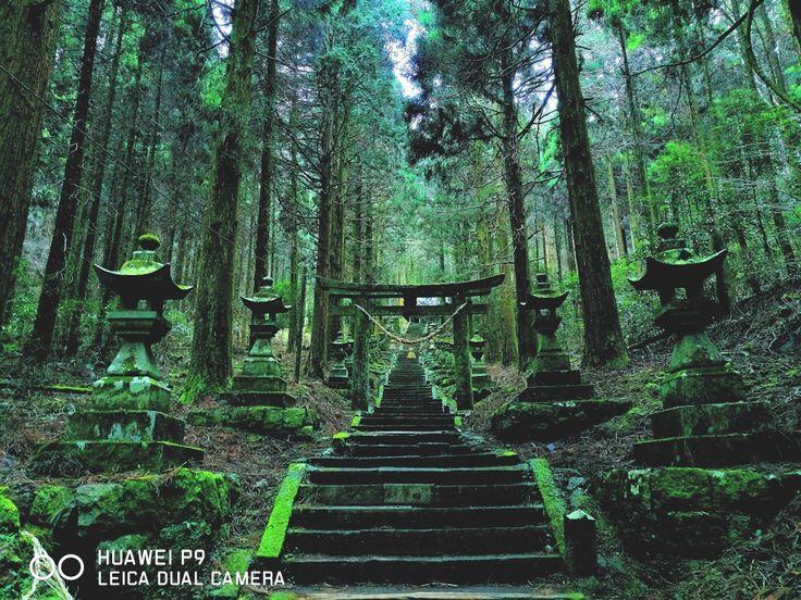 上色見熊野座神社,熊本県,高森町,shrine,torii gate,kumamoto,japan,Huawei P9