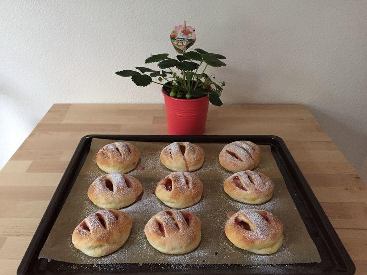 Was ihr dazu braucht: •250g Erdbeeren •1/2 Päckchen backfeste Puddingcreme Vanille •125ml + 60ml Milch •150g Magerquark •60ml Öl •75g + 1 EL Zucker •1 Prise Salz •300g Weizenmehl •1 Päckchen Backpulver •etwas Puderzucker zum Bestäuben