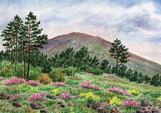 Vesuvius - vegetation, June 6, 1998 watercolor by Jana Haasová