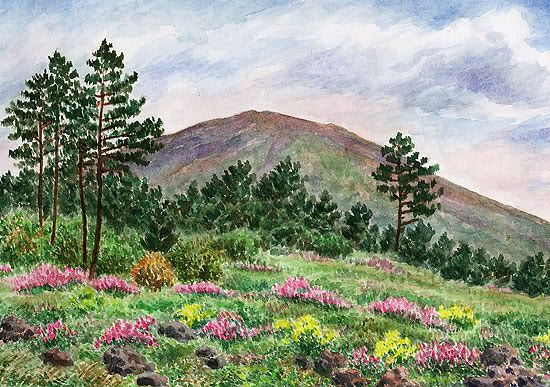Vesuvius - vegetation, June 6, 1998 watercolor by Jana Haasová