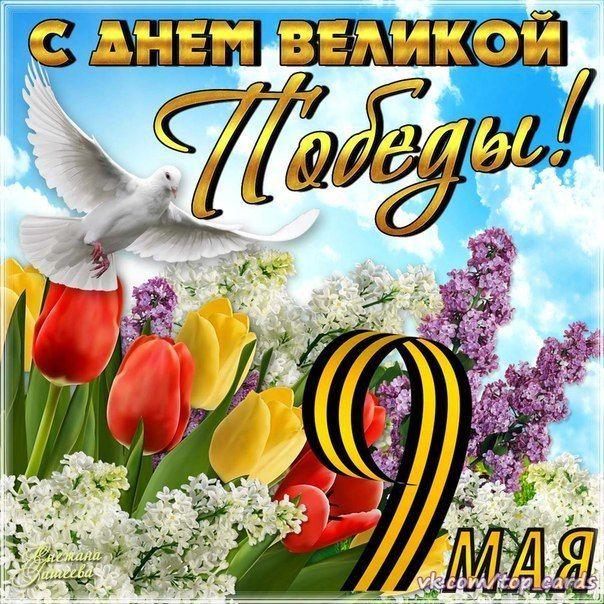 Показать открытку 9 мая, днем семьи картинки
