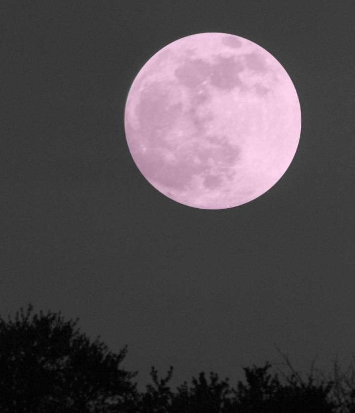 Go to our Live Show Page here for more viewing times and details:  www.Almanac.com/pink-moon