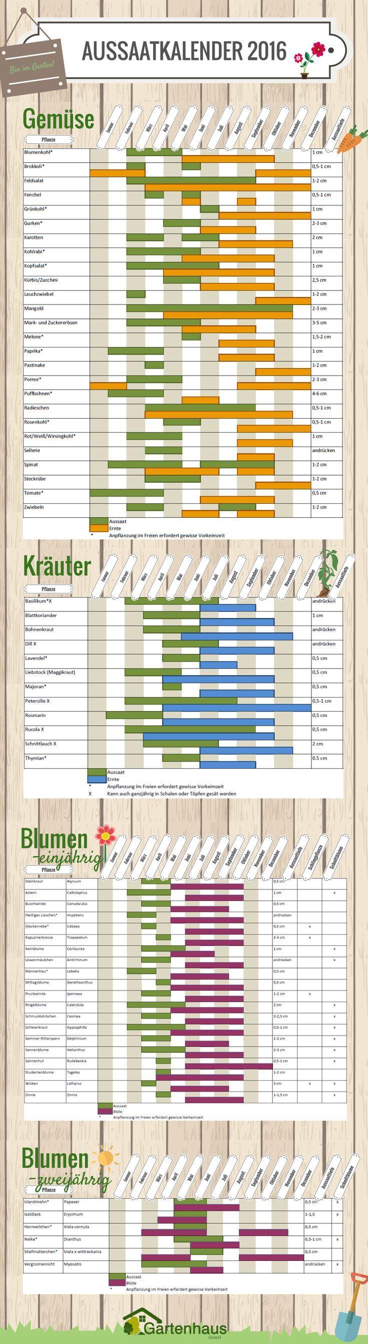 Wir hoffen, dass dieser Aussaatkalender Ihnen im Jahr 2016 einen wild sprießenden Garten in jeder Jahreszeit bescheren wird. Damit Sie in jedem Monat auf Aussaat und Ernte vorbereitet sind, drucken Sie sich doch den Kalender aus und hängen ihn sich in das Gartenhäuschen. Auf dass kein Samen ungepflanzt bleibt! Aussaatkalender 2016 - Gartenhaus GmbH ähnliche tolle Projekte und Ideen wie im Bild vorgestellt findest du auch in unserem Magazin . Wir freuen uns auf deinen Besuch. Liebe Grüße