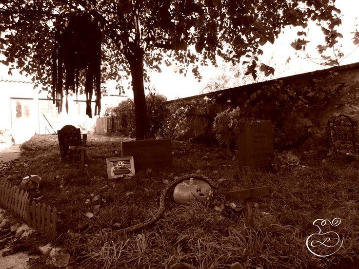 Cimetière, détraqueur, citrouilles Graveyard, dementor, pumpkins