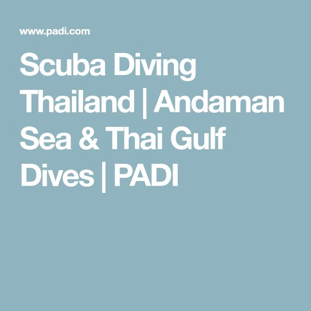 Scuba Diving Thailand | Andaman Sea & Thai Gulf Dives | PADI