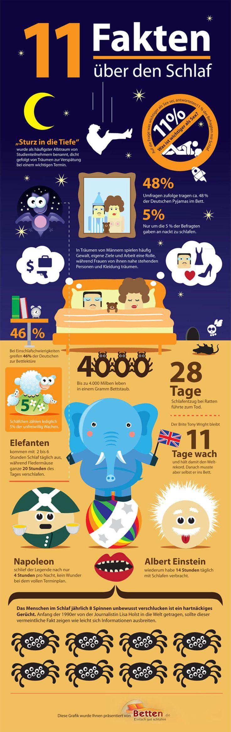 11 Fakten über den Schlaf                                                       …
