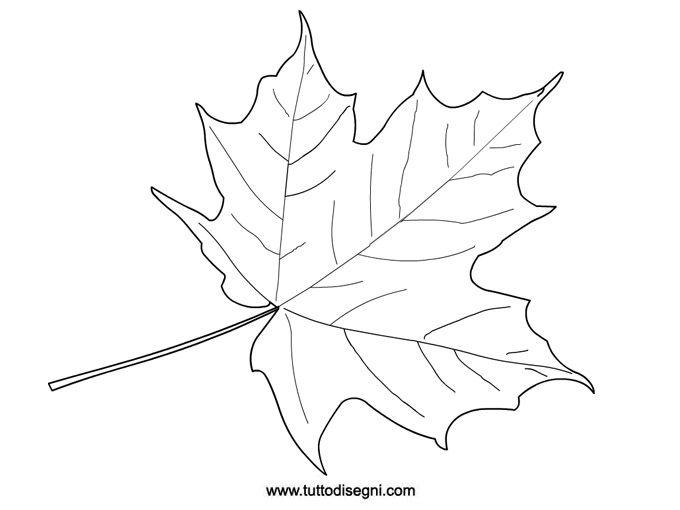 Foglia di vite disegno cerca con google videira uva for Fogli da colorare e stampare