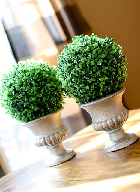 Ballard Designs topiary $49 each. Love them! DIY $7/set