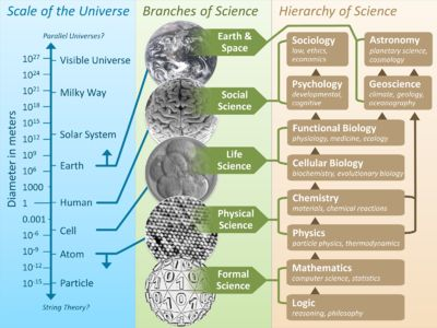 Branches of science - Wikipedia, the free encyclopedia