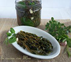 Portulaca sottaceto, erba porcellana, purchiaca alle erbe aromatiche