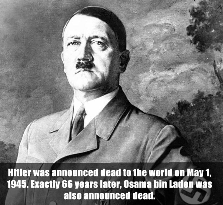 19 Best Hitler Images On Pinterest
