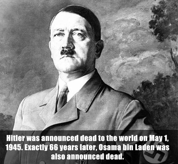 19 best images about Hitler on Pinterest | Osama bin laden, Image ...