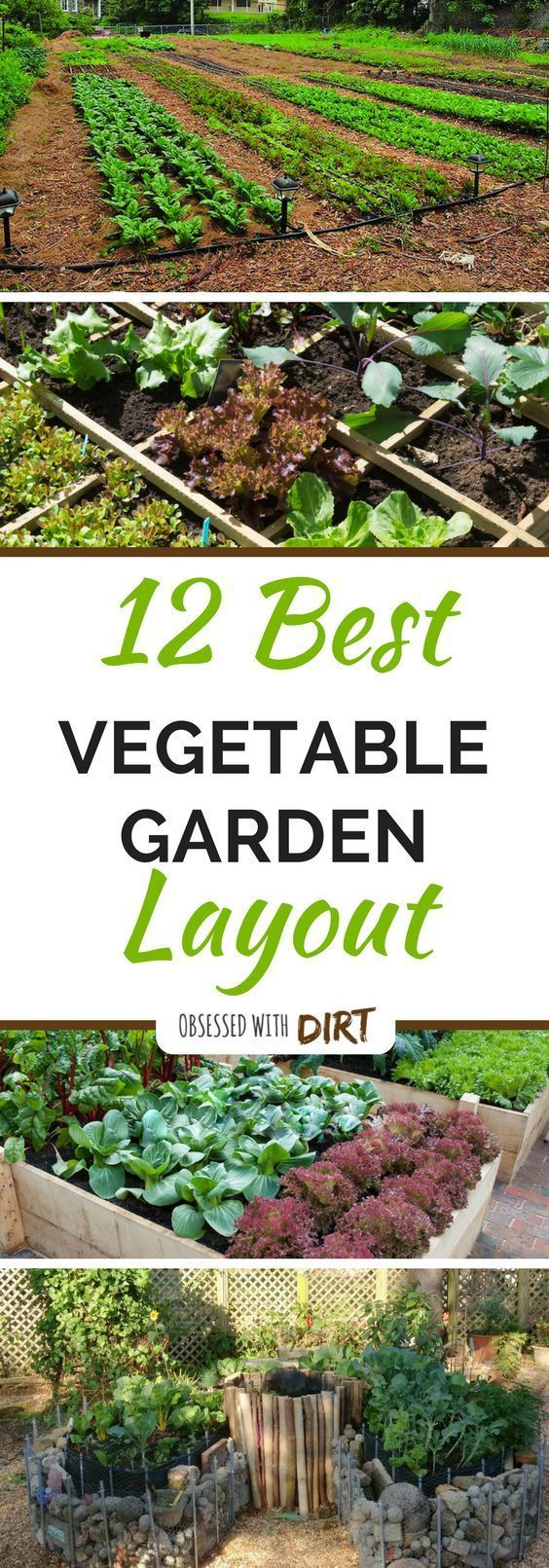 Designing the perfect vegetable garden layout isnt easy. There are so many things to consider! Your vegetables will need a lot of sun, water, nutrients and loving care to grow.