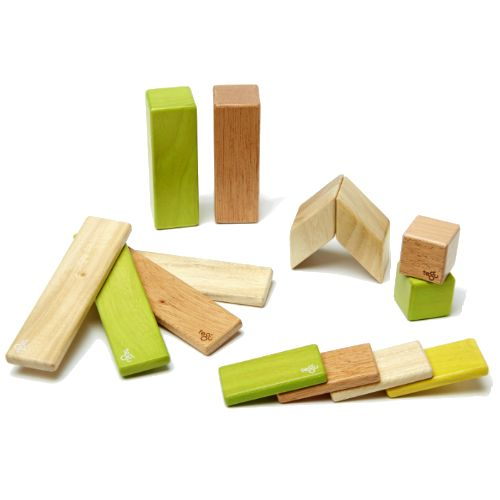 Tegu Magnetic Wooden Blocks 14 Piece Jungle