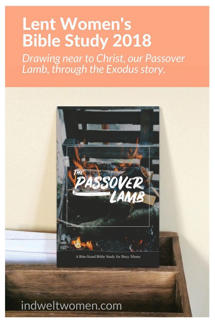 In February, join us for a 6-week bite-sized women's Inductive Bible study for Easter (Lent) on Exodus 12 - the Passover story.  A story that draws us closer to our ultimate Passover Lamb - Christ. A story that celebrates our redemption. A story that rekindles the fire in our hearts for Christ.  Learn more about this daily devotional for busy moms: http://indweltwomen.com/shoppe/the-passover-lamb-an-exodus-12-study