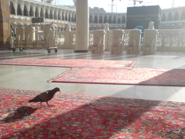 Makkah | this spot in Almasjid Al haram, from Bab al Umrah, first time to see the Ka'bah. I love sitting there.