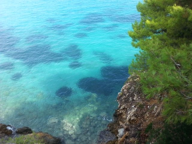 blue sea and green nature #rosys_little_village  #yoga  #retreat #vegan #holiday #slowlife
