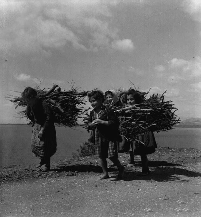 Paul Almasy Μαζεύοντας ξύλα, 1953