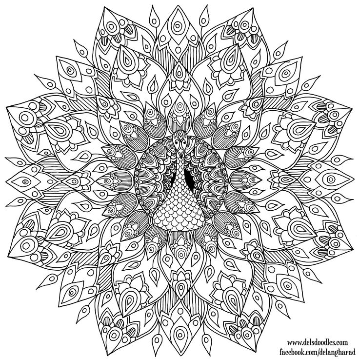 Hand-Drawn Peacock Mandala Colouring Page by WelshPixie on DeviantArt 4000x4000 pix