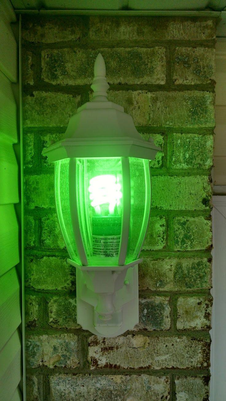 10 mejores imgenes de green light a vet en pinterest luces verdes green light for vets aloadofball Choice Image