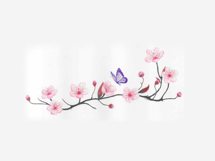 cherry_blossom_and_spring_time_with_flying_butterfly_tattoo_idea  I really want this