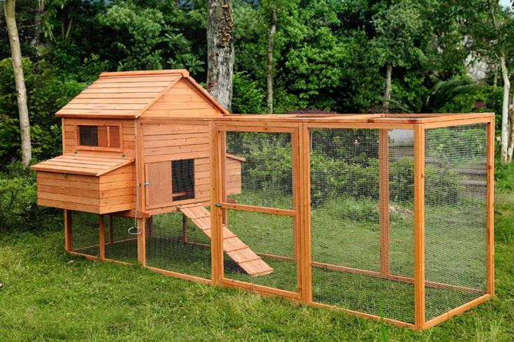 large wooden chicken coop for sale I think this is the one... 10-15 chickens, has a large run, two sets of nesting boxes, on sale right now and free shipping.