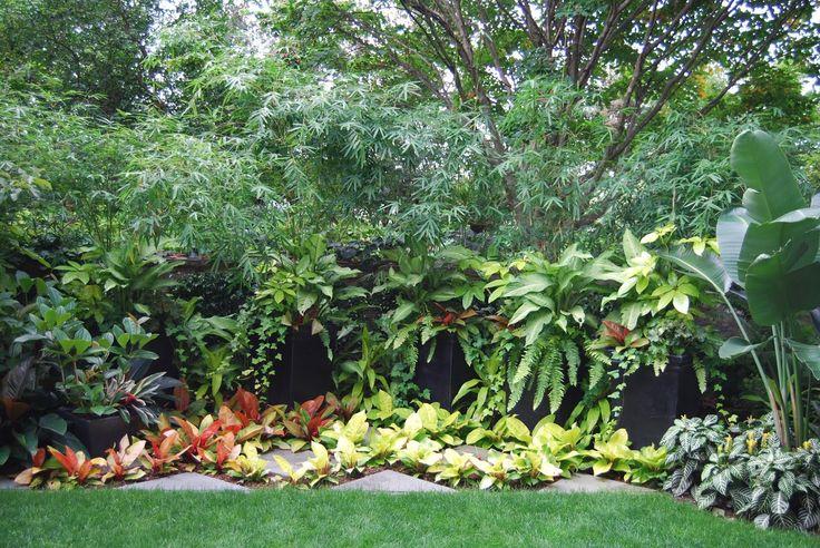 437 best tropical gardens images on pinterest tropical for Semi formal garden designs