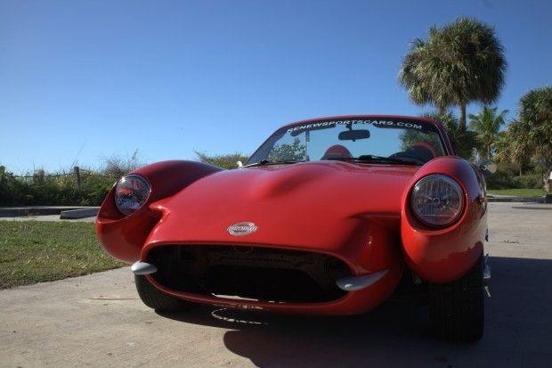 Photo: Hemp sports car. Courtesy of Renew Sports Cars.