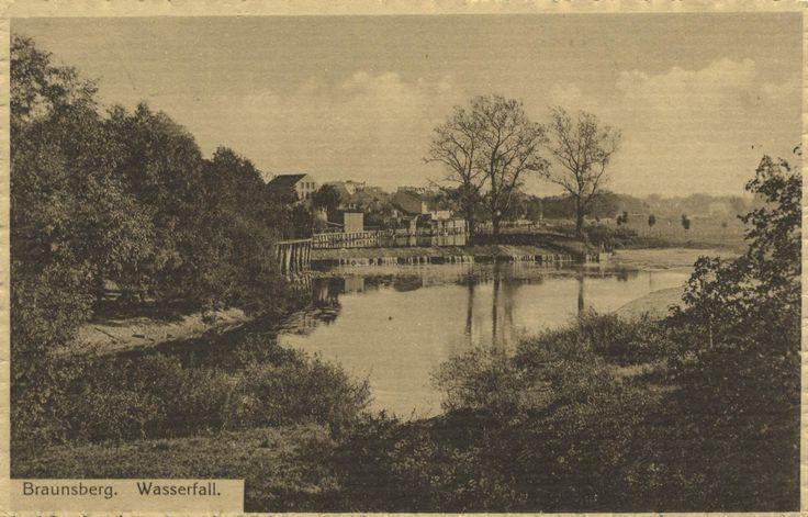 Braunsberg.