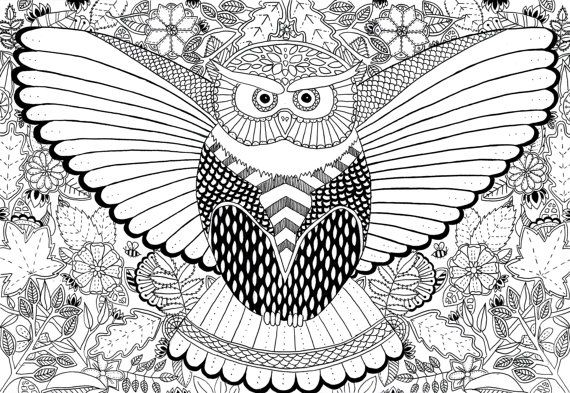 Owl-colouring-in-digital-download