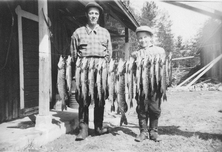 catch of fish - kalansaalis, Viuruniemi, Finland ... Näin komean kalansaaliin Aarne ja Paavo Räsänen saivat yhdestä rysästä v. 1955