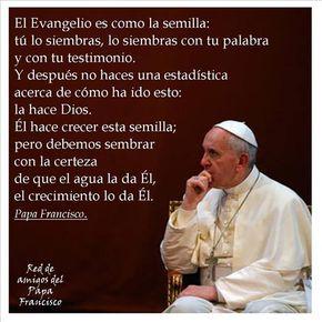 Frases del Papa Francisco en imágenes del mes de Agosto 2014
