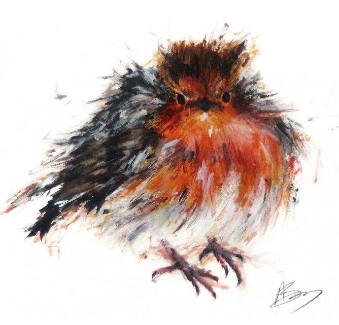 Plump Winter Robin by Aaminah Snowdon