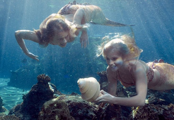 mermaid fun - Mako Mermaids Photo (34143249) - Fanpop fanclubs
