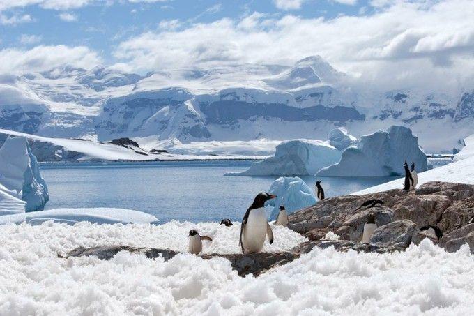 世界最後の秘境、6番目の大陸、「南極」。行くまでも行ってからも大変な場所ですが、感動の絶景が待っているはず。