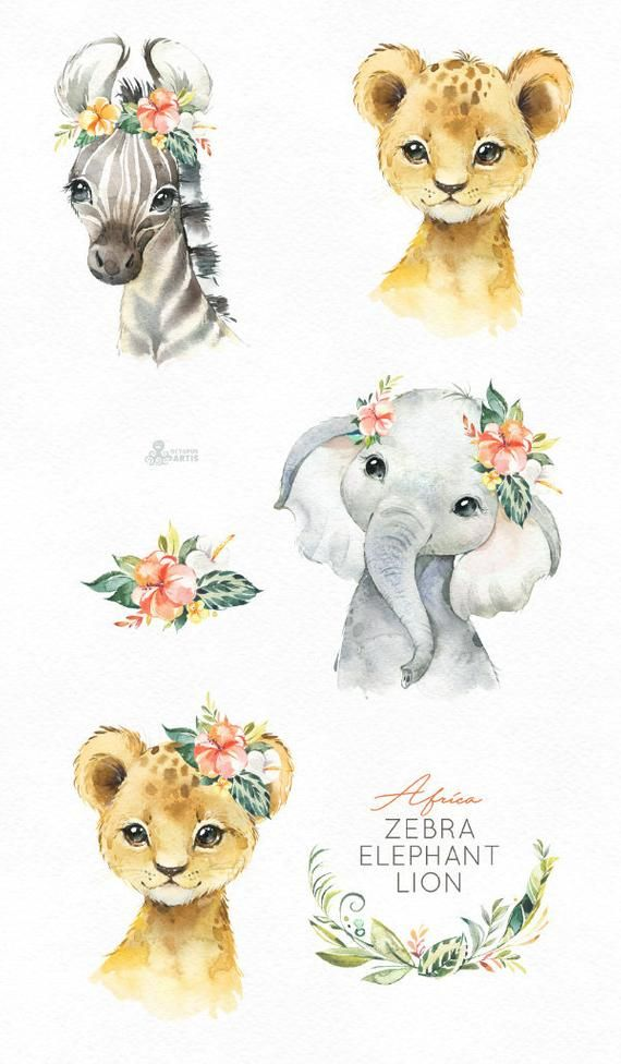 Africa Zebra Elephant Lion Watercolor little animals clipart, babies portrait simba cub wreath flowers, kids cute, nursery art, baby-shower