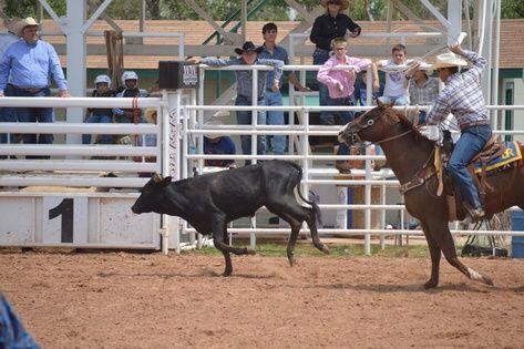 Boy cal farleys gay ranch