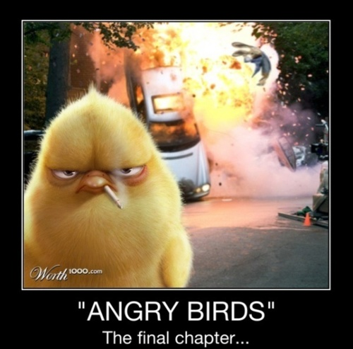 Geek humor :PBirds Stuff, Funny Things, Geek Humor, Final Chapter, Angry Birdslmbo, Funny Pictures, Funny Stuff, Modern Warfare, Angry Birds04
