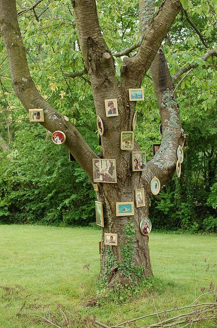 Sanne's picture tree
