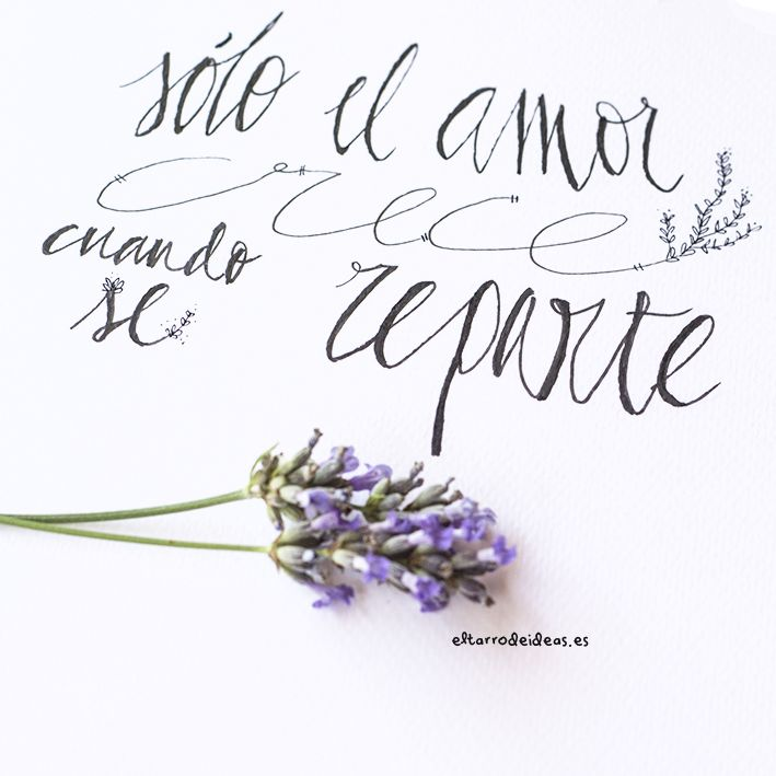 88 best LOL images on Pinterest | Spanish quotes, Mr wonderful and ...