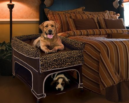 25 Best Ideas About Dog Bunk Beds On Pinterest Dog
