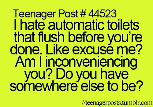 -and then when you stand up and you are done, it DOESNT FLUSH!!!!!!!!!!!!!