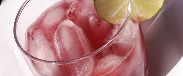 Virgin Pomegranate And Cranberry Bellinis Recipe - Genius Kitchensparklesparklesparklesparkle