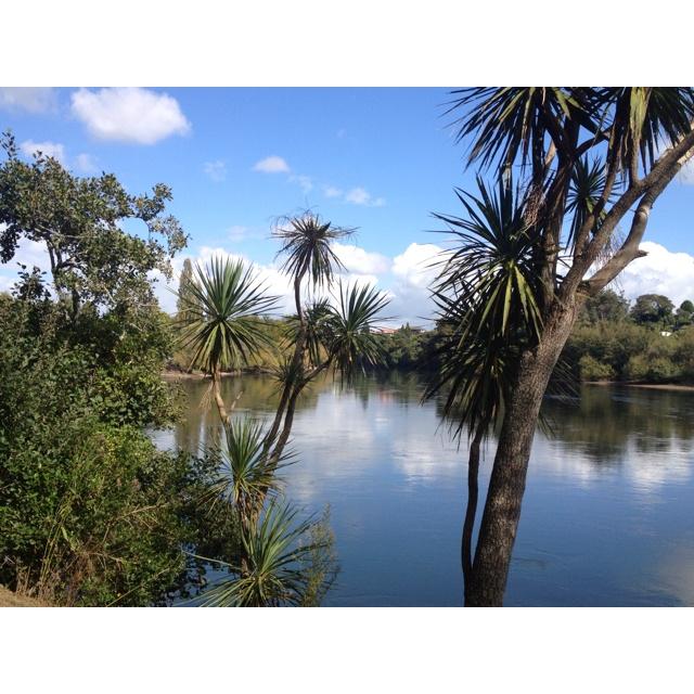 Waikato River, Hamilton, New Zealand