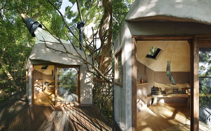 Japan's largest treehouse roosts in a 300-year-old Camphor tree