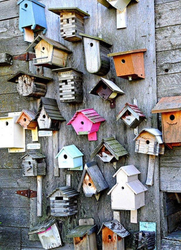 Vrolijke en... vele vogelhuisjes