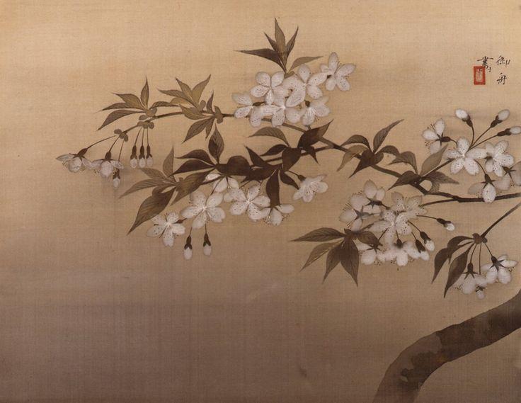 速水御舟 《夜桜》 山種美術館 静寂。