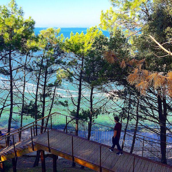 Escalier de la Corniche bassin d'Arcachon