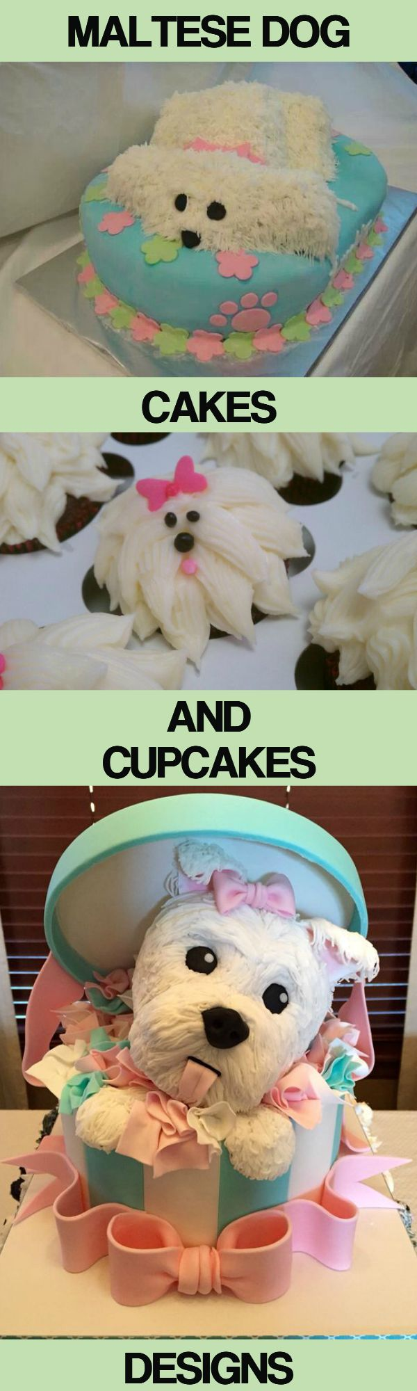 Cute Maltese dog and puppies cakes and cupcakes designs...